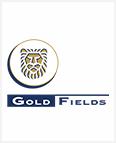 gold_filds